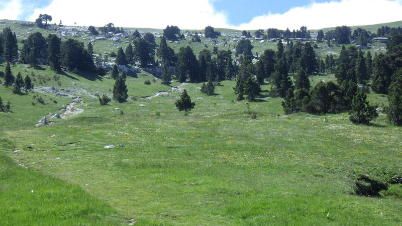 The plateau before the summit. Still 650 ft of ascent to go.