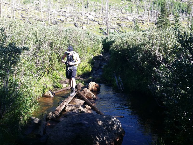 Log and rock bridge. Watch your footing!