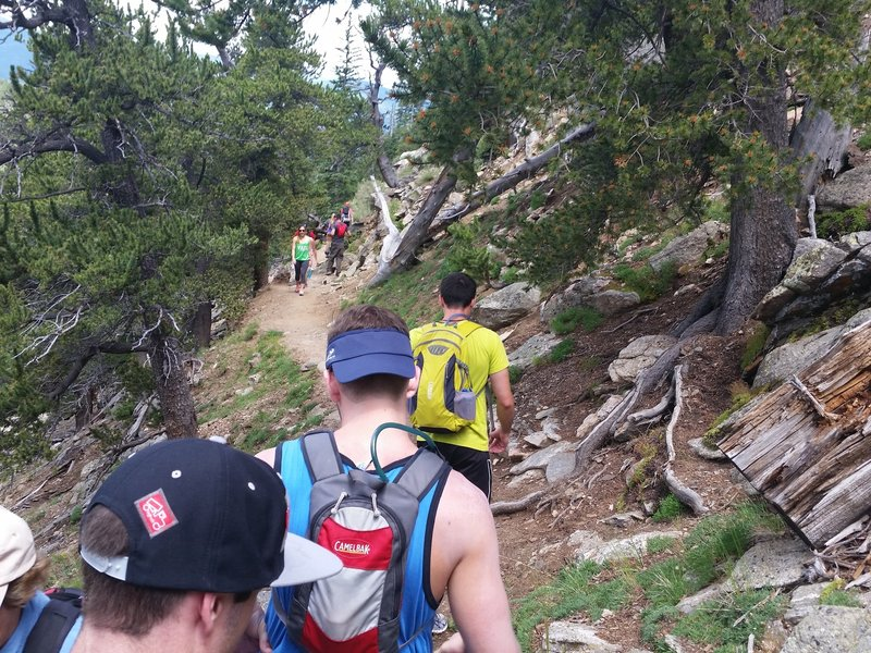 Trail can get crowded in between the trailhead and the Chicago Creek crossing.