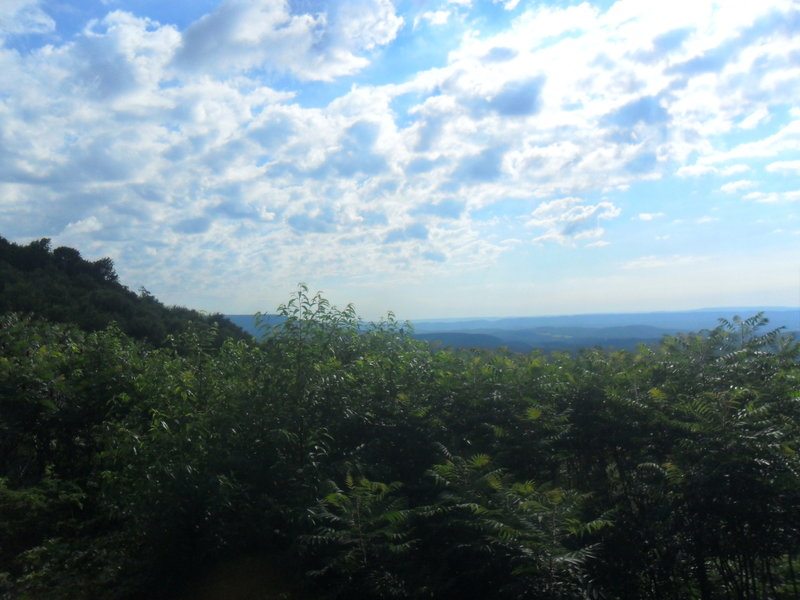 Barely seen is Blue Knob off in the distance, on the far left partially blocked by foliage.  As you run this section you'll have a few occasions to see out across the valley, but no true vistas are available.