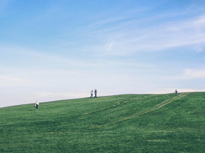 Montrose Hill