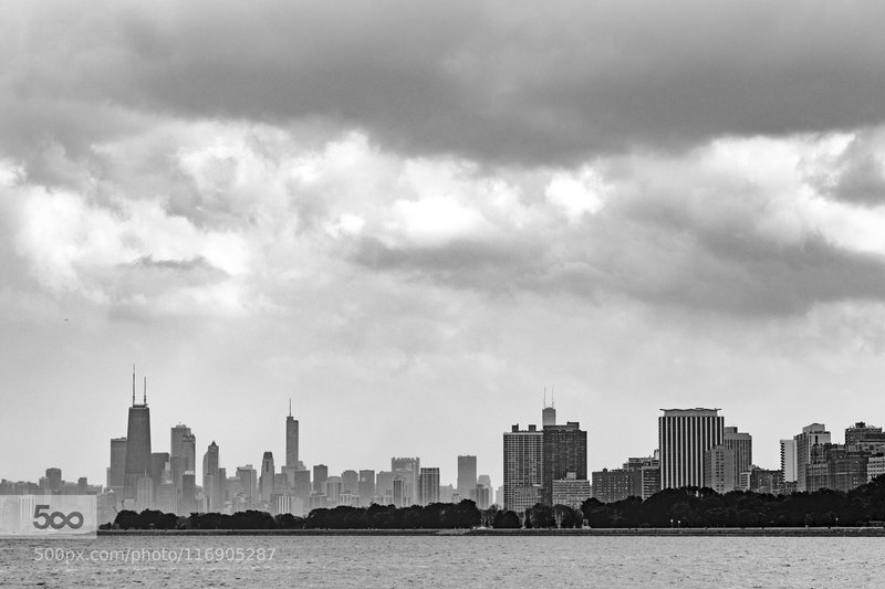 The Chicago skyline from Montrose Park.