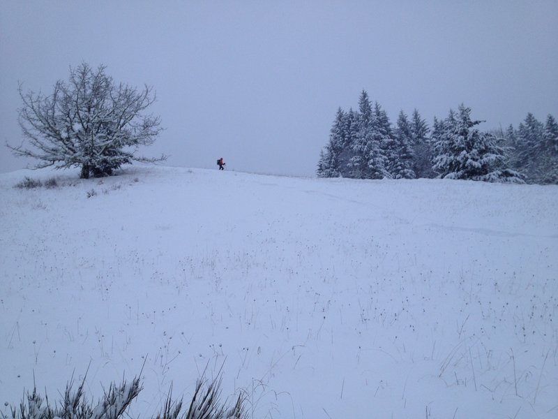 Skiing what is normally running trails at the top of Dimple Hill