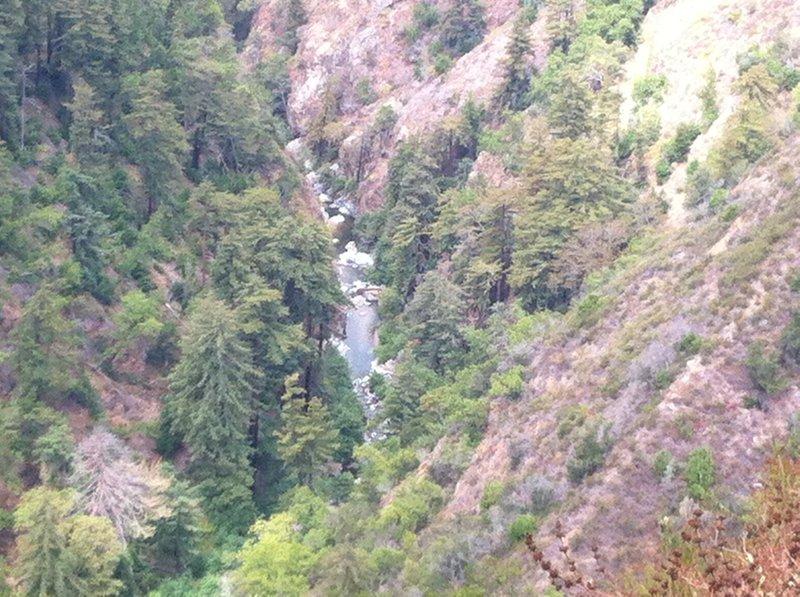 The Wild and Scenic Big Sur below Pine Ridge Trail