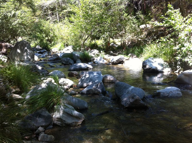 The Big Sur River at Sykes Camp