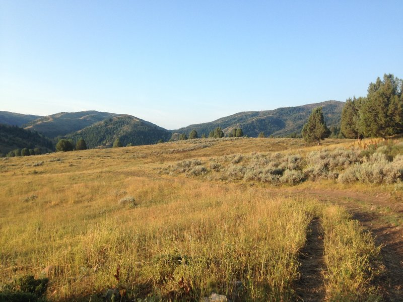 A picture of the trail as it winds through an open valley filled with grasses and sagebrush as the sun rises over it.
