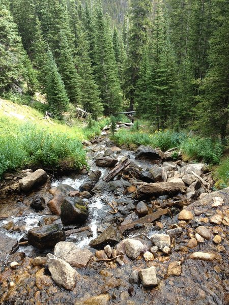 The view down from the crossing at Alpine Brook at mile 2
