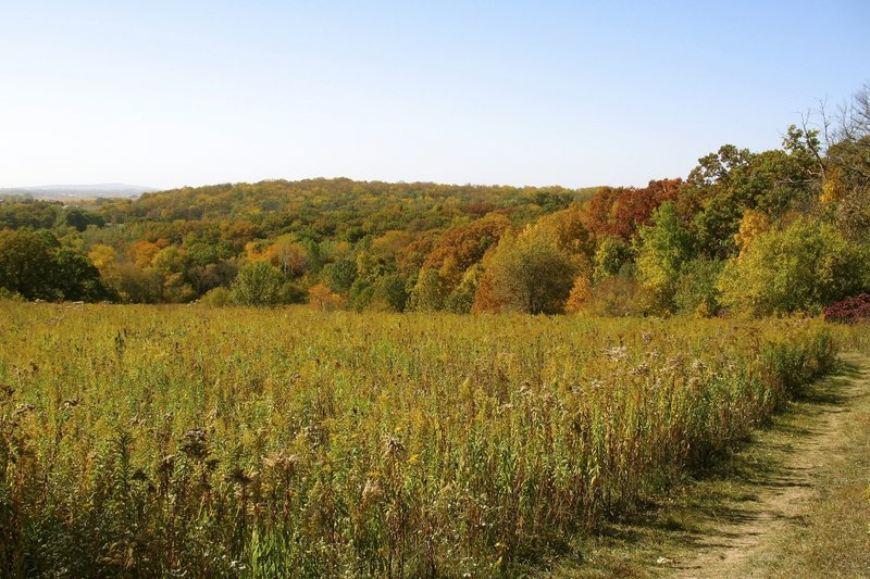 Looking west, northwest with Blue Mound State Park in the distance.