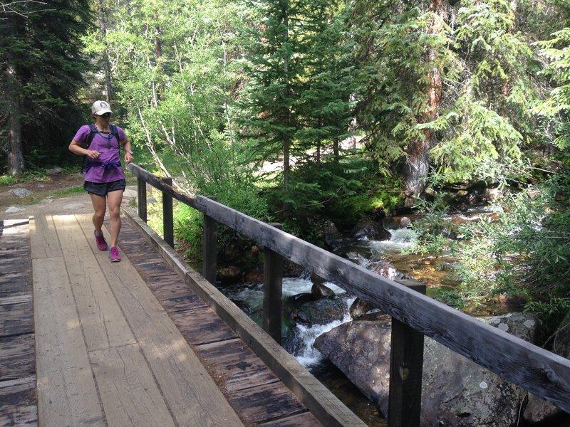 The start of the Timberline Lake Trail