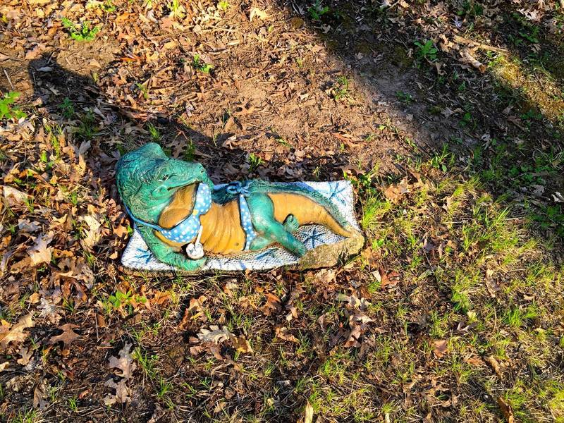 Please do not disturb any sunbathing wildlife found on the trail.