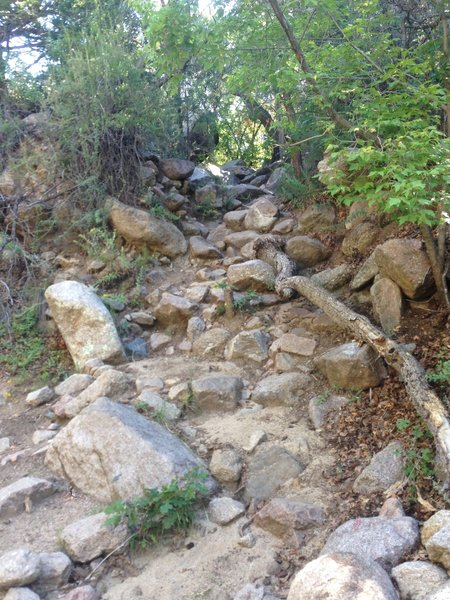 This is the turnoff from the first creek bed. It is sometimes marked with a cairn, but was not when I visited.