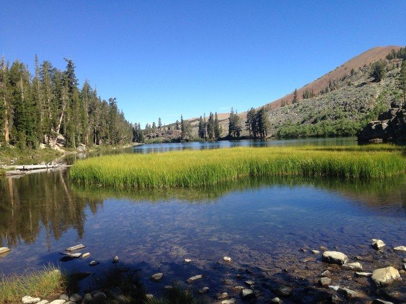 The creek feeding into Arrowhead Lake