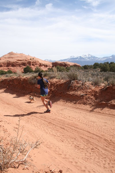 Behind the Rocks Ultra, views of the La Sals