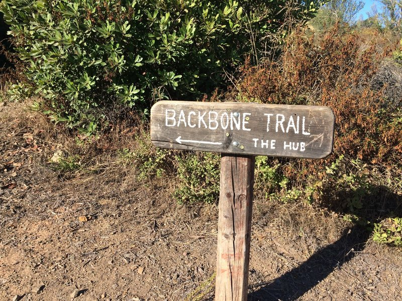The Hub at Backbone Trail