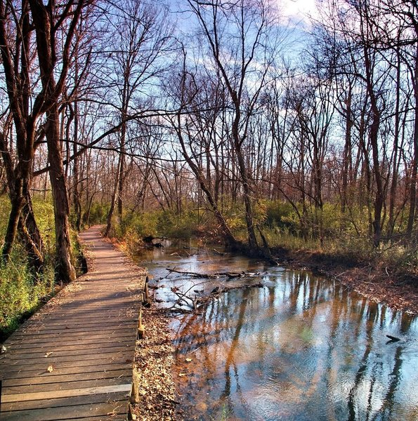 The boardwalk of Cook's Trail as it follows Sandy Creek