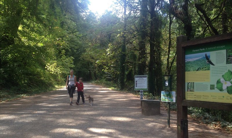 A mother and son hike on the Erikson Trail with their dog. Bill Cunningham Photo