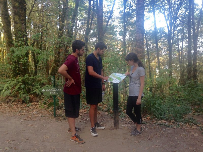 Visitors from England check out a trail map at the intersection of the Wildwood and Dogwood Trails. Bill Cunningham Photo