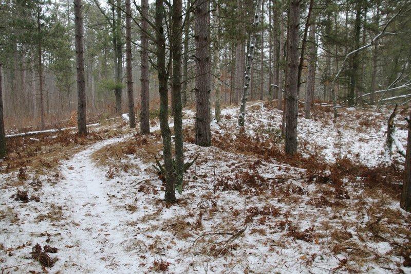 Early winter run.