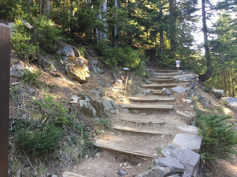 Start of the Comet Falls trail from the parking lot