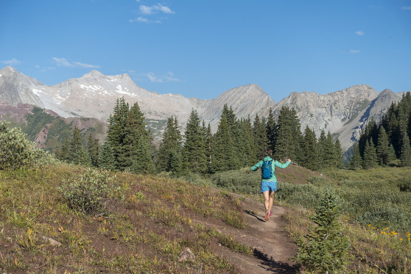 Back into the trees headed down the west side of Buckskin Pass. Photo: Michelle Smith