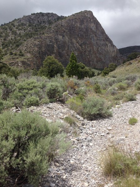 A view of the trail and one of the amazing cliffs that make up Sawtooth Canyon