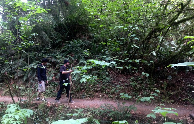 Two men explore the Ridge Trail. Bill Cunningham Photo