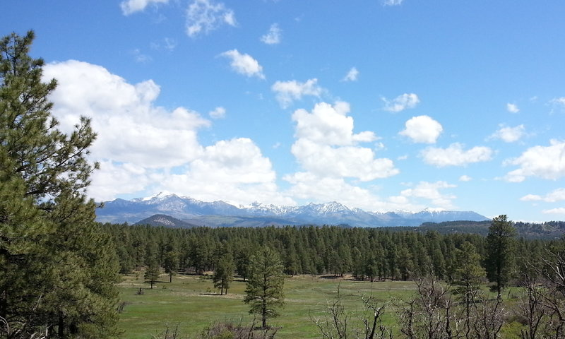 Pagosa Peak rises in the distance in the Turkey Springs Trails System.