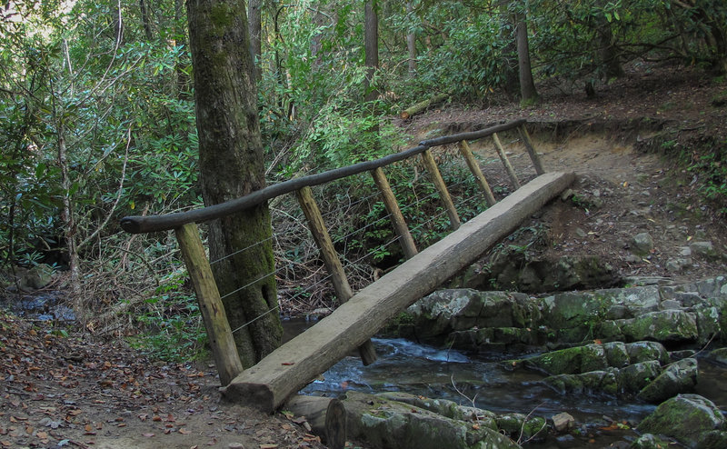 Creek crossing on Abrams Falls Trail.