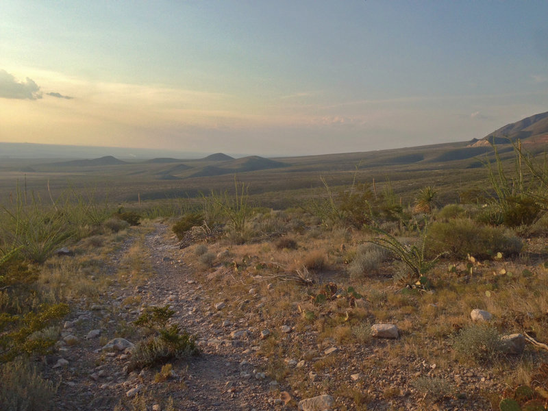 View of the foothills and the Lost Dog area from Thunderbird.