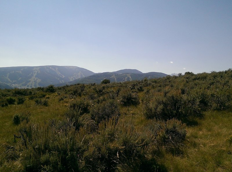 Good views of Beaver Creek ski area from the West Avon Preserve
