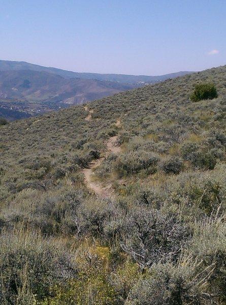Saddle Ridge Trail heading west