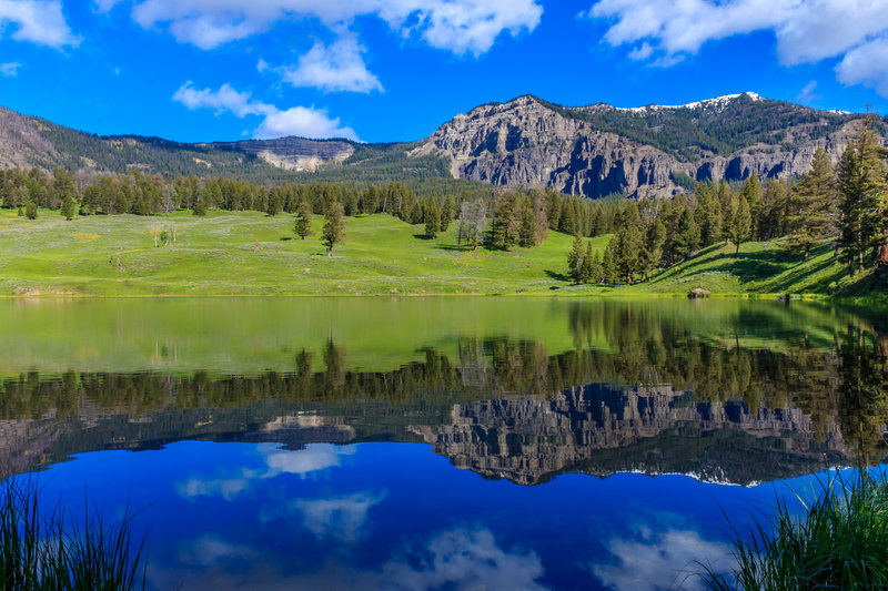 Trout Lake in Yellowstone National Park.