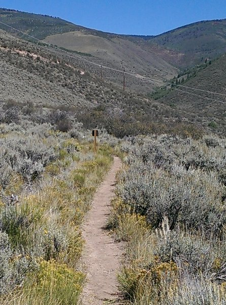 Approaching the junction with an unnamed doubletrack trail.