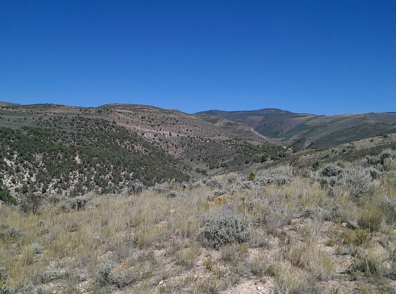 The parched hillsides to the north and the Berry Creek drainage.