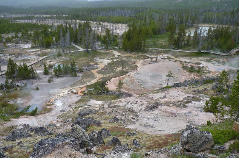 Norris Geyser Basin from above.