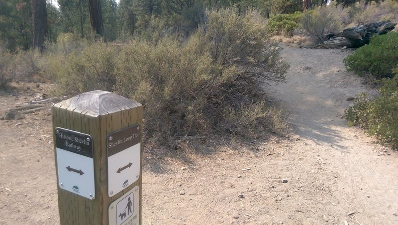 Check for trail signs.