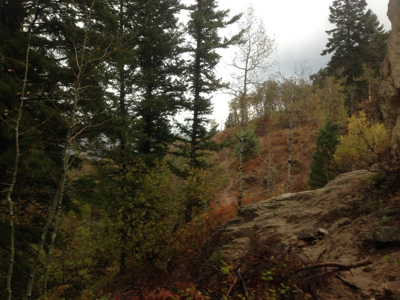 A view of the trail from the base of the rock thumb previously pictured.