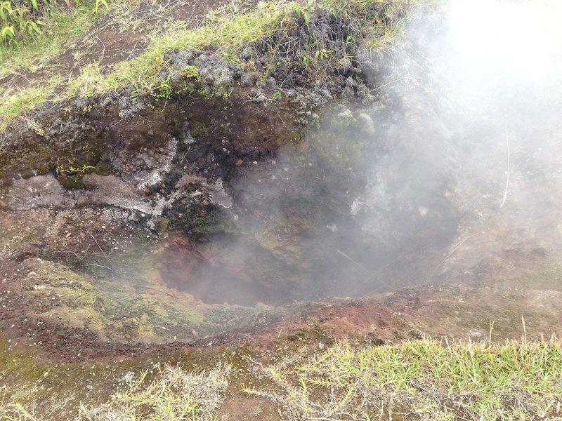 Volcano National Park - Sulphur Banks Trail