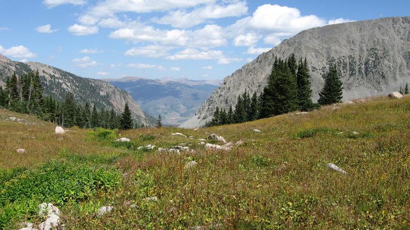Red Peak and Buffalo Mountain