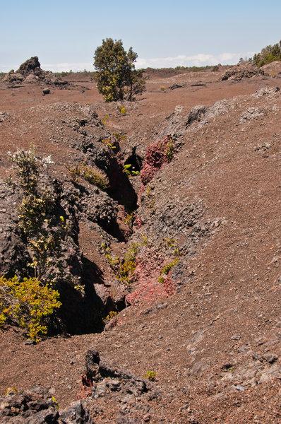 Mauna Ulu fissure.