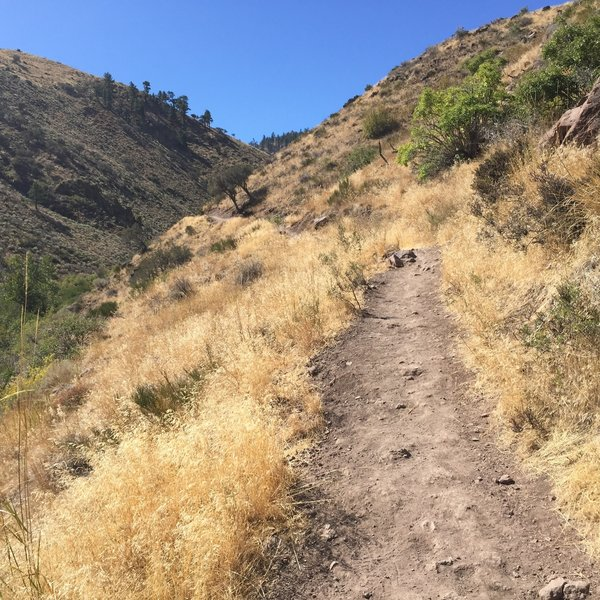 The majority of the trail is singletrack and sun exposed.