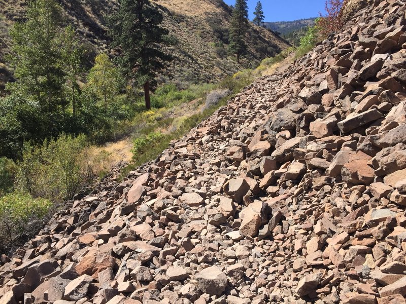 There are several areas of talus/fallen rock.