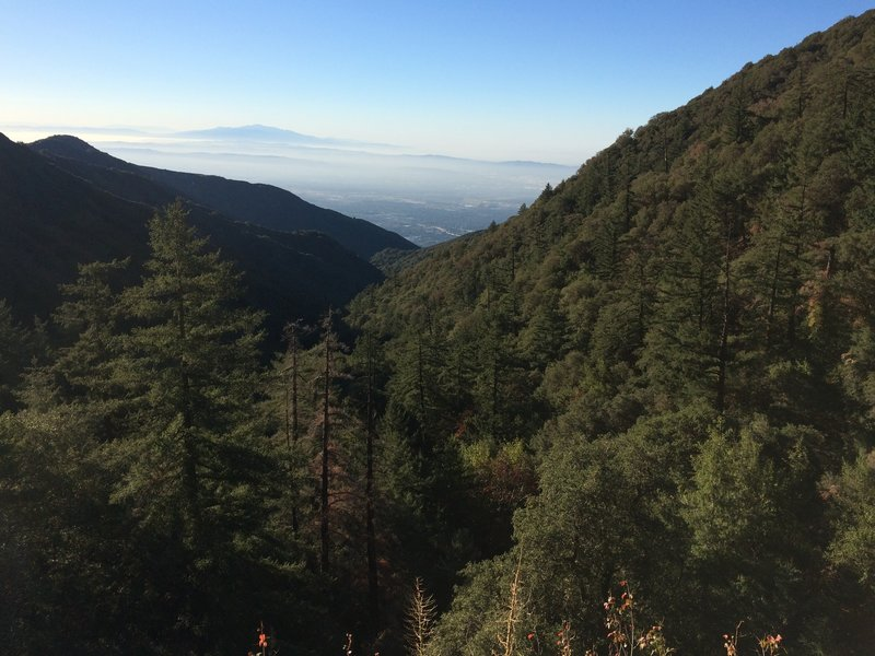 Amazing view coming up Mount Wilson