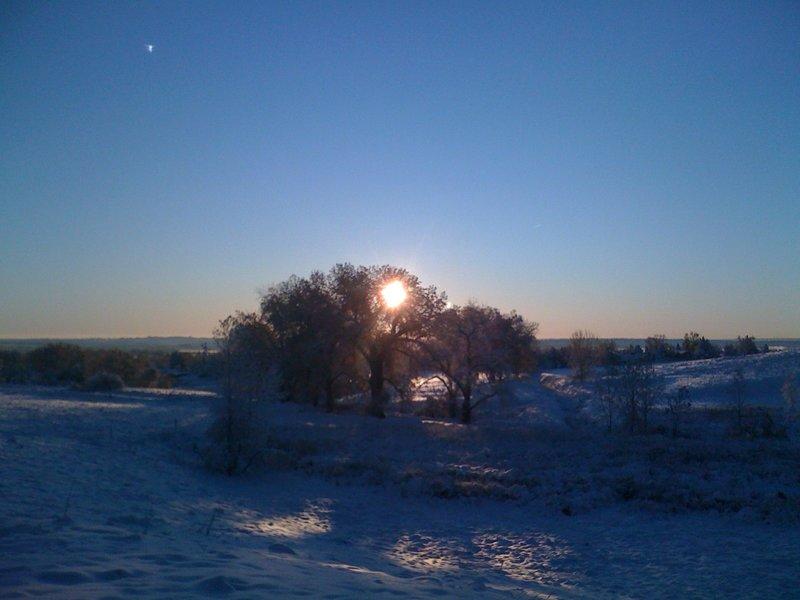 Winter Scenery in Coyote Run Open Space