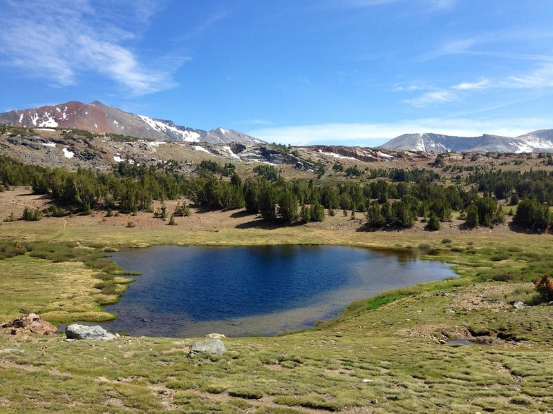 Alpine meadow and lake near Mono Pass.