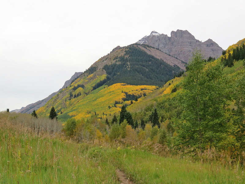 Mid-September color landscape
