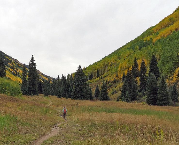 The meadows give you a chance to enjoy grand vistas.