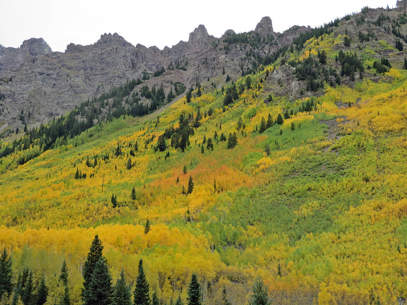 A dash of red to add spice to the yellow fall colors. Grab your binoculars to look for Mtn Goats high up on the rocks.