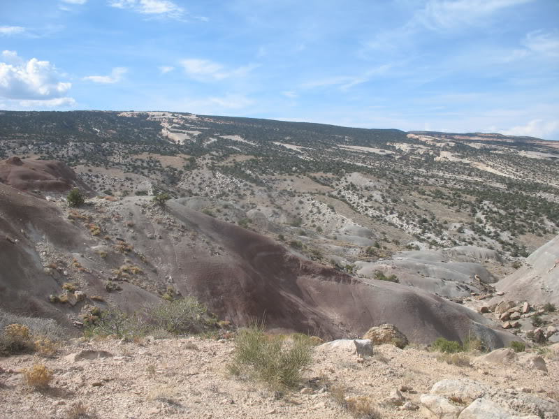 Looking across Little Park Road at The Ribbon and the Colorado National Monument's monocline.