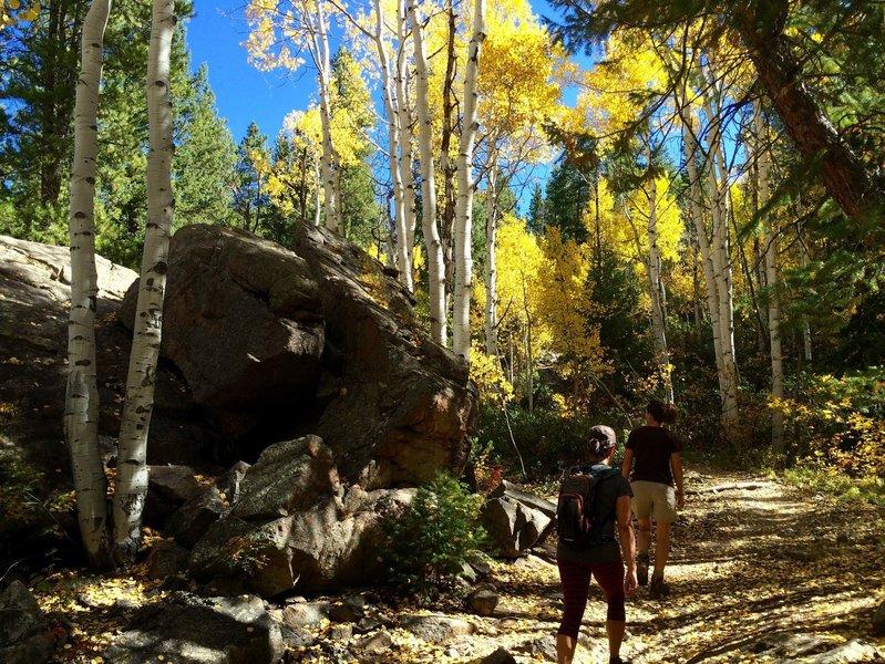 Cool boulders near Difficult Creek Trail